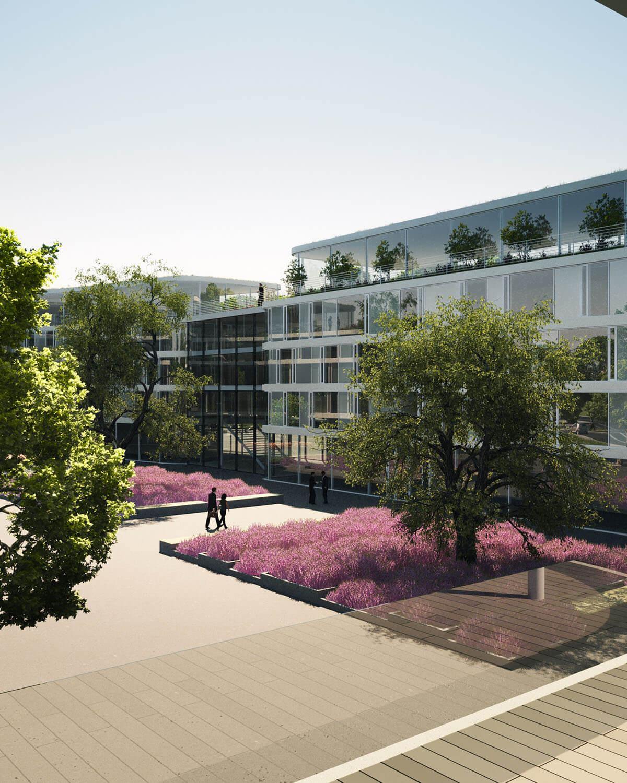 Projektentwicklung Bad Homburg Eberhard Horn Designgruppe, Blick Innenhof Natural Balance Campus